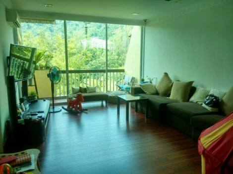 The living halln wth laminated wooden flooring
